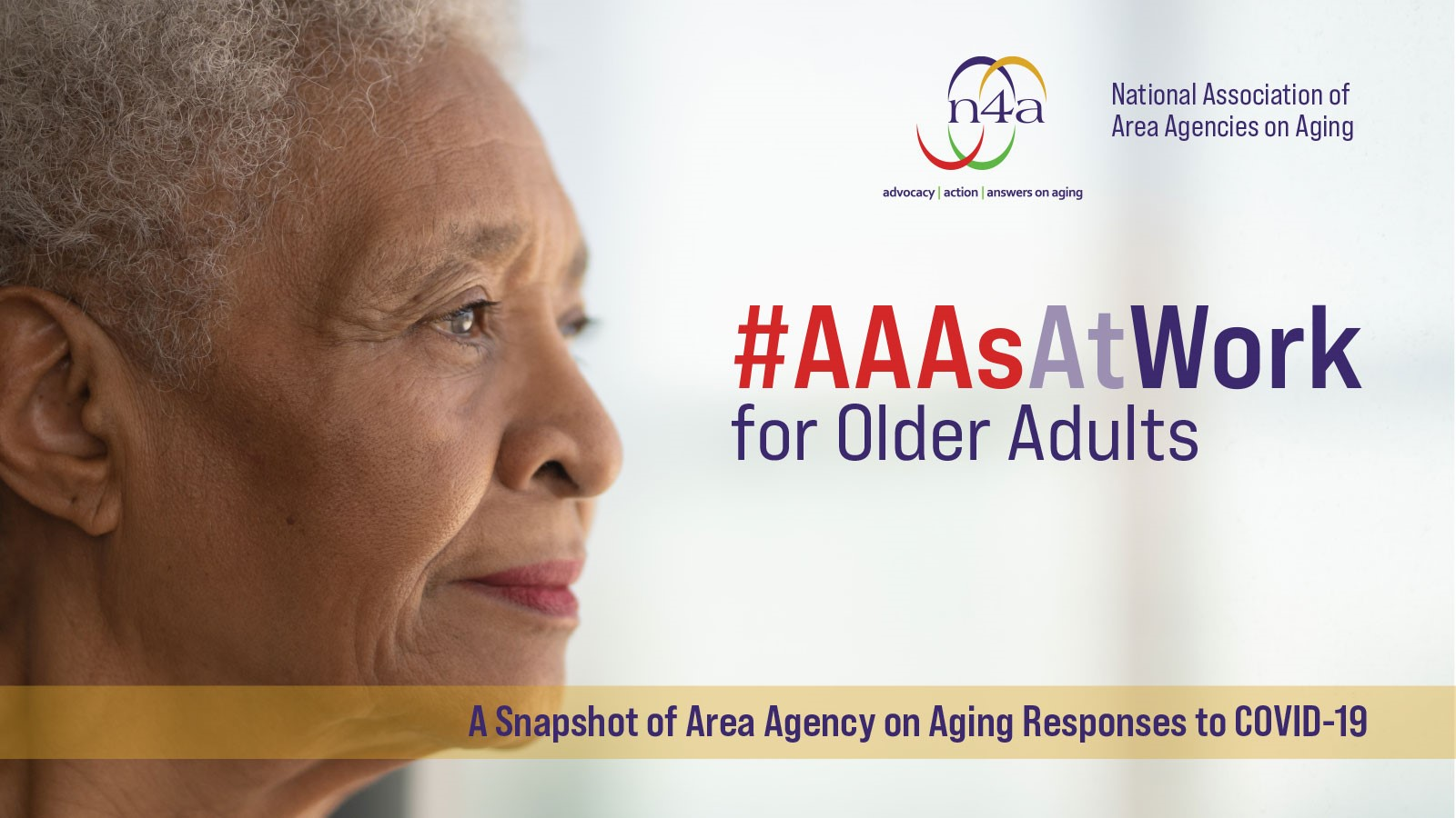 N4a National Association Of Area Agencies On Aging